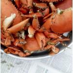 crabs_01