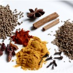 the spices (clockwise from top): star anise, cinnamon stick, cumin seed, cloves, tumeric powder, chilli powder, dried chilli, coriander seed