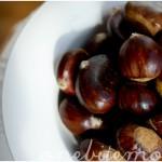 chestnut_02